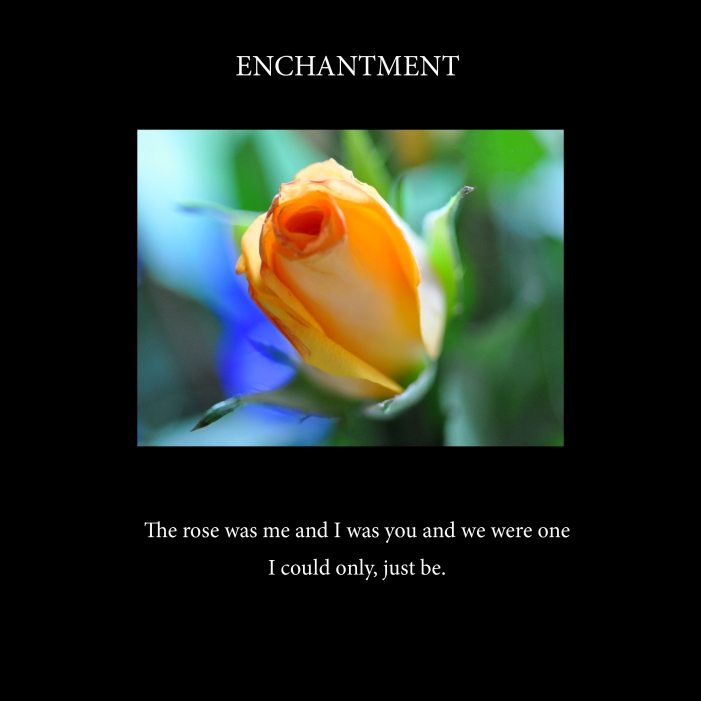 Enchantment-cover