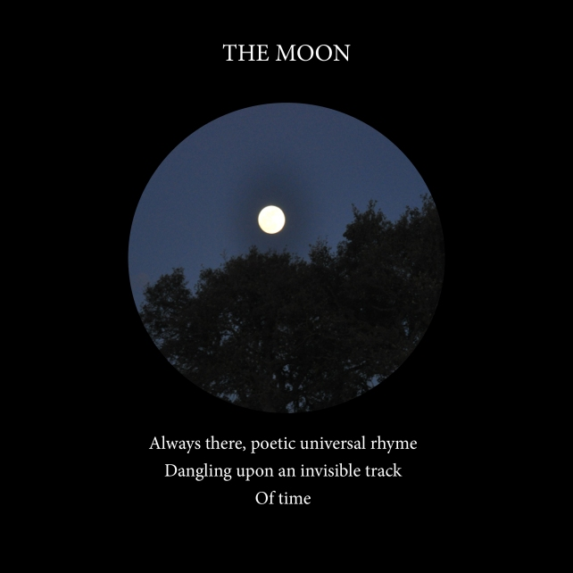 The Moon-Cover