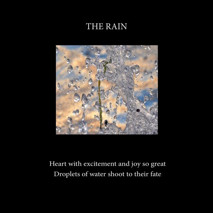 The rain-Cover