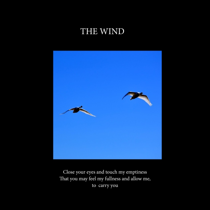 The wind-cover