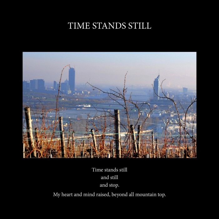 Time stands still cover