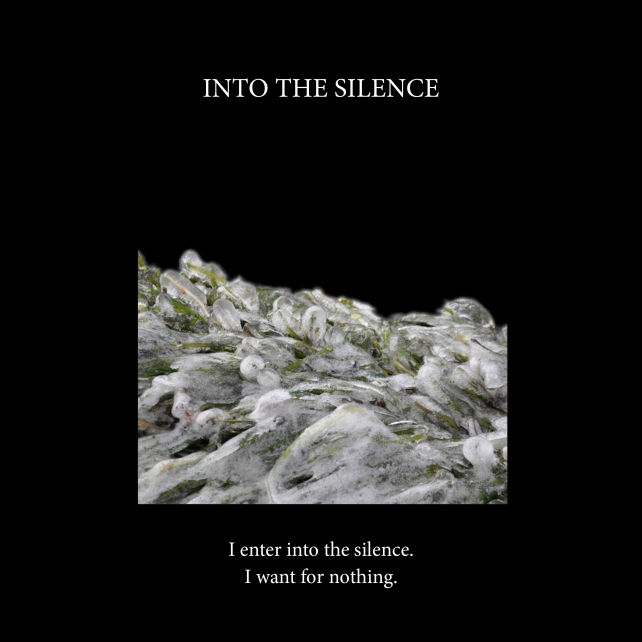 Into the silence-cover