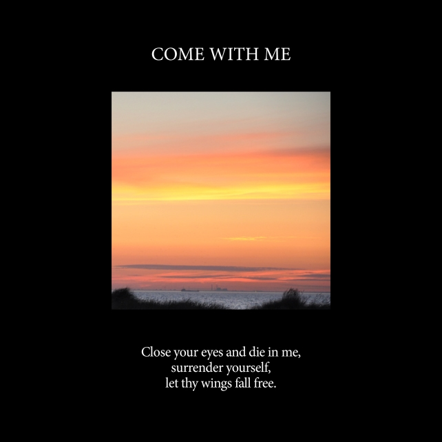 Come with me-Cover