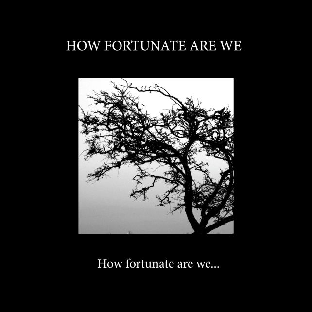How fortunate-cover