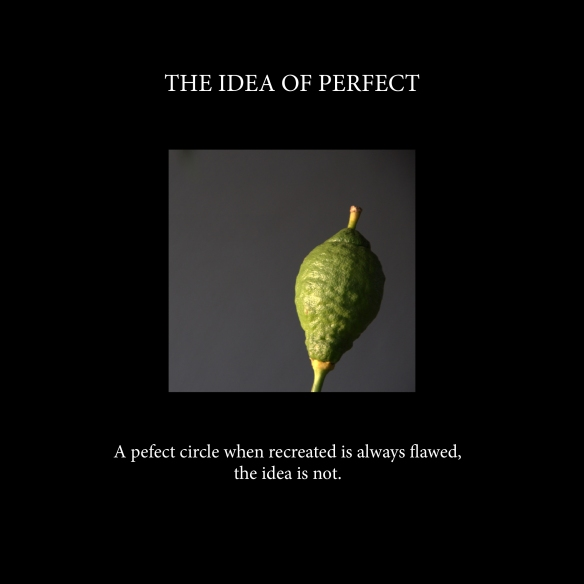 The idea of perfect
