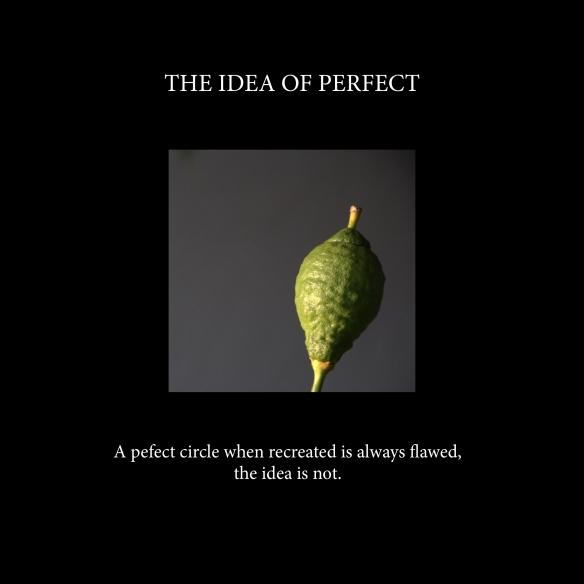 The idea of perfect